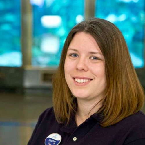 Headshot Heather Schneider