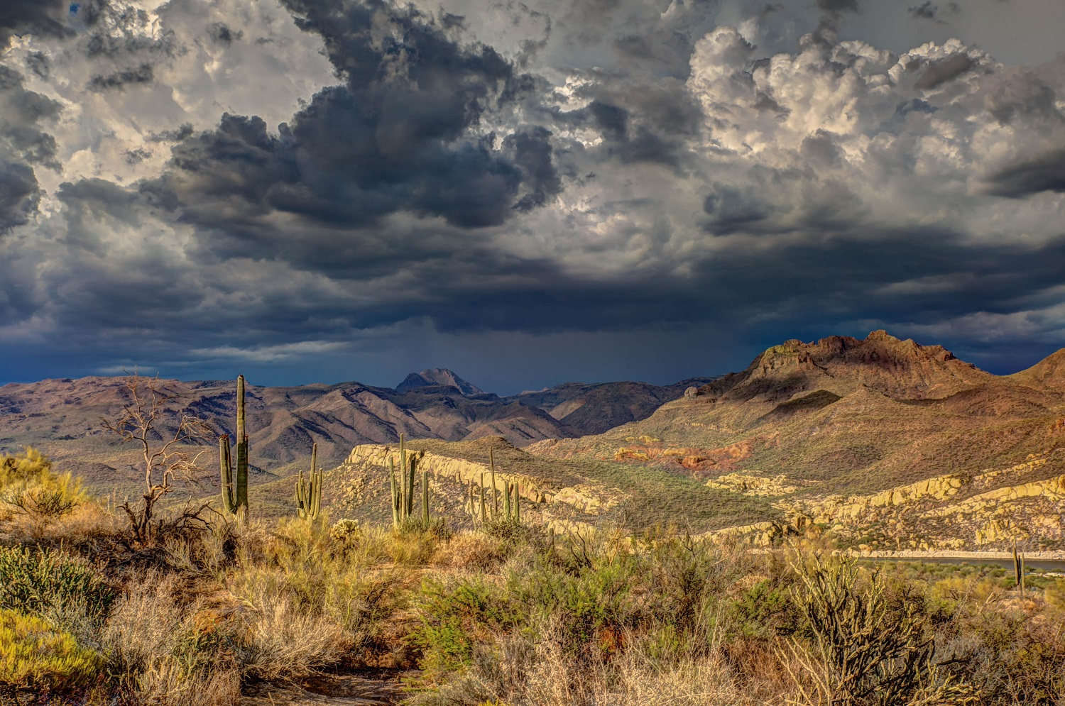 Image looking toward a mountain range with cactus and dark grey and blue clouds above.