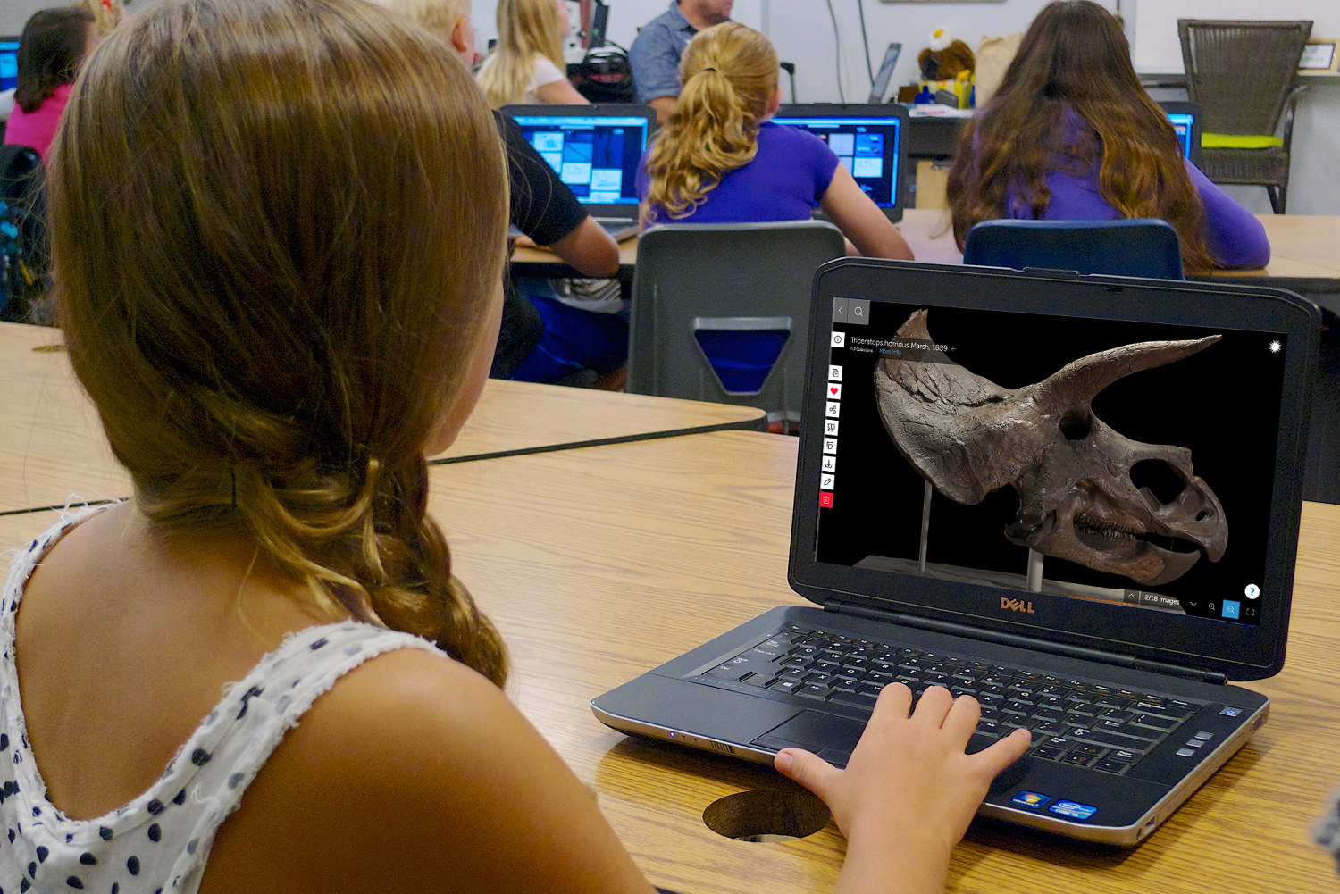 A young woman sits at a long desk with a laptop computer open in front of her. She has her right hand on the track mouse and the screen shows the image of aTriceratops skull in 3D. The young woman has her hair in a side braid and she is wearing a flowered tank top. The image is taken at an angle so you cannot see the young woman's face.