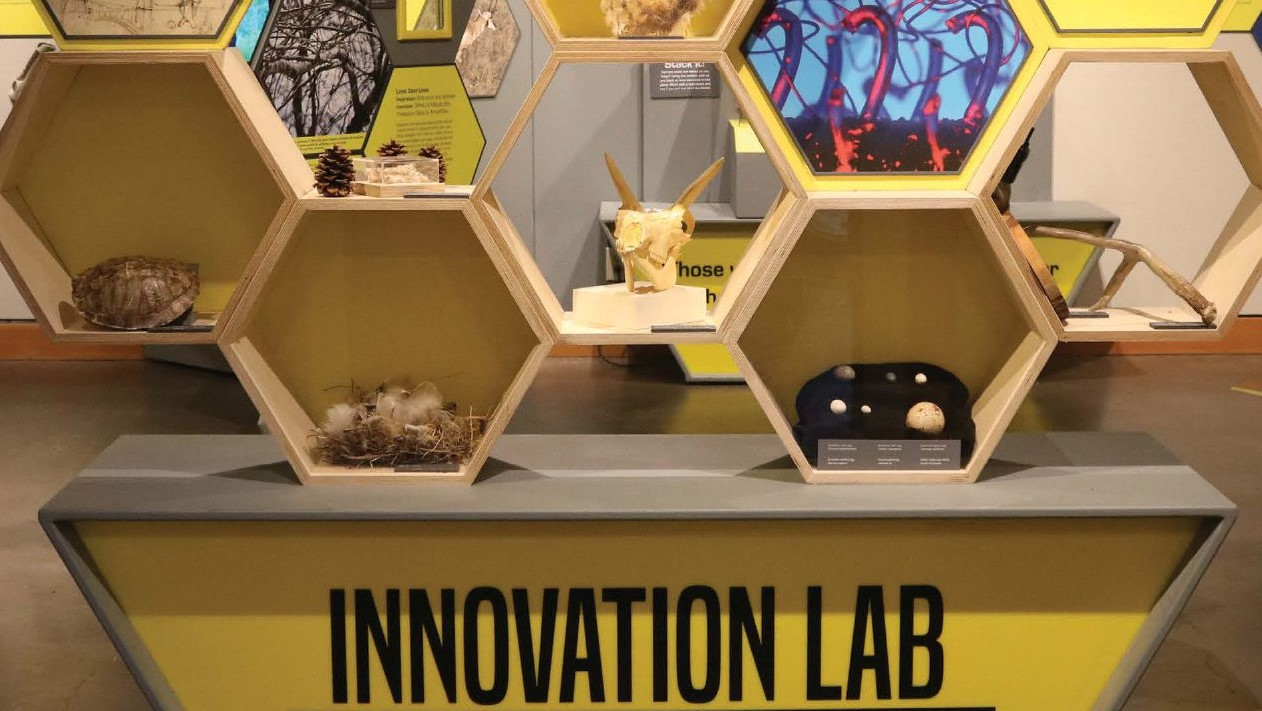 Image of the High Desert Museum's Innovation Lab which is all about Design Inspired by Nature. The Lab looks like a bee hive.