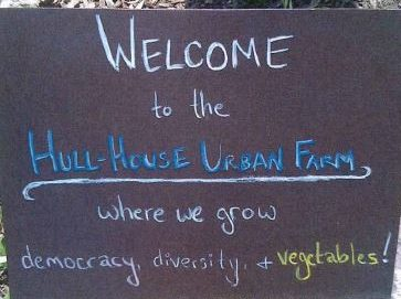 With the help of community volunteers, the Jane Addams Hull-House Museum cultivates an heirloom vegetable garden under the guidance of museum farmer Ryan Beck.