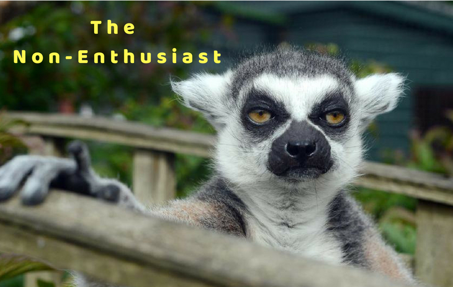 "Face of an unhappy lemur with the caption ""The Non-Enthusiast"" above it."