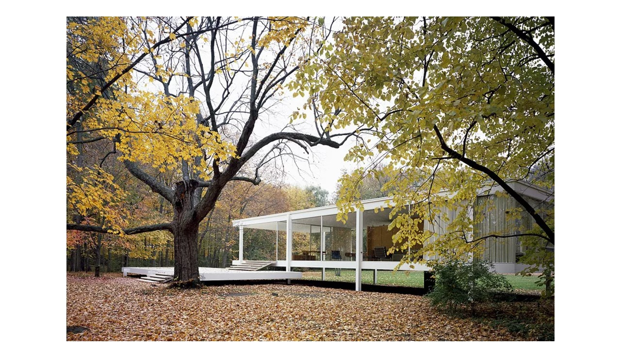 Exterior view of the Farnsworth House looking toward the terrace with a large tree to the left.