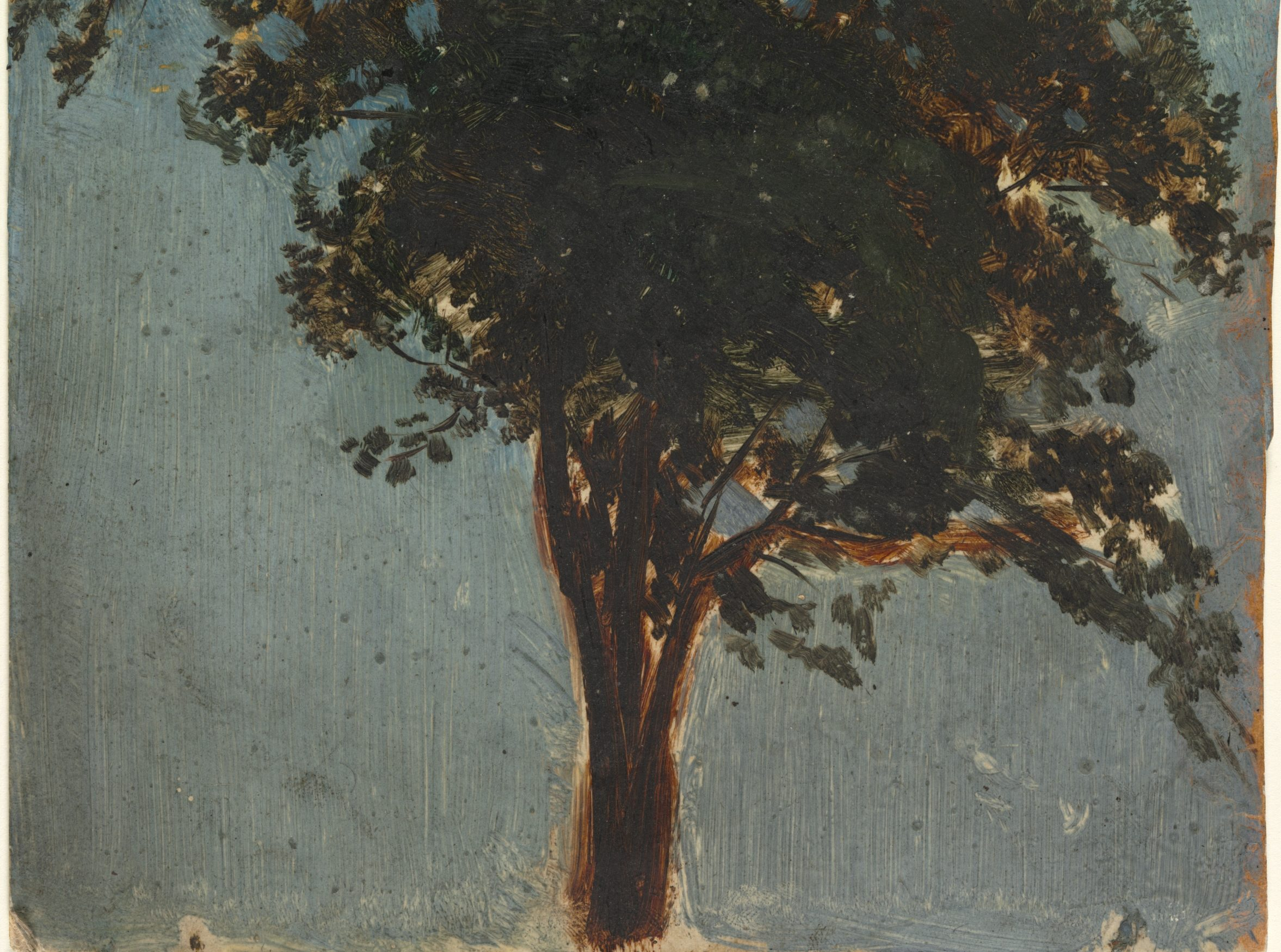 A painting of a tree against a faded blue background