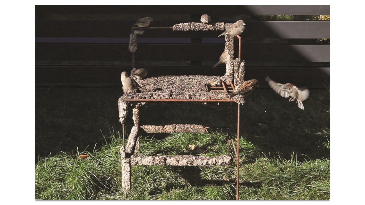 A corner chair made out of steel covered in birdseed sits on a lawn with several different birds flying and sitting on the arms.