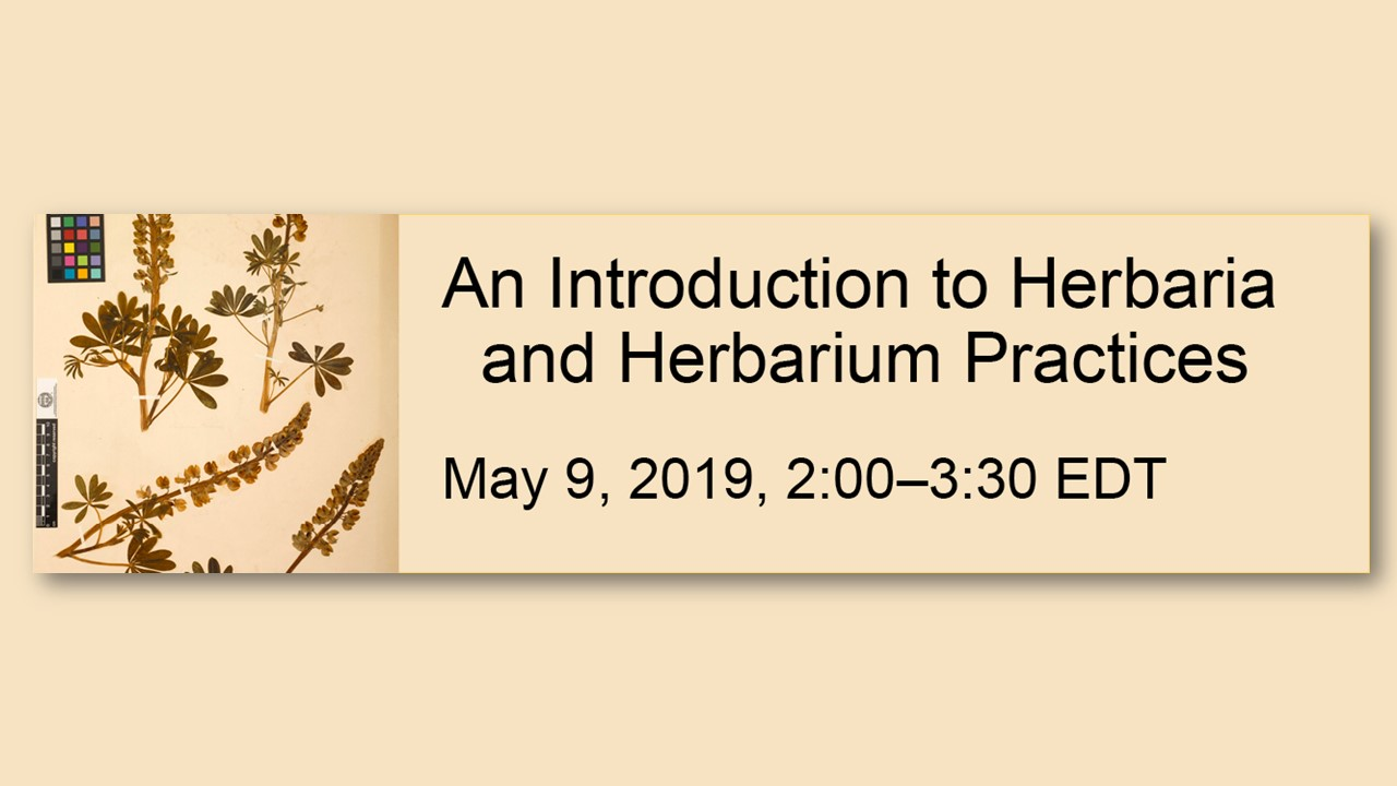 An Introduction to Herbaria and Herbarium Practices webinar May 9, 2019, 2:00 - 3:30 pm ET
