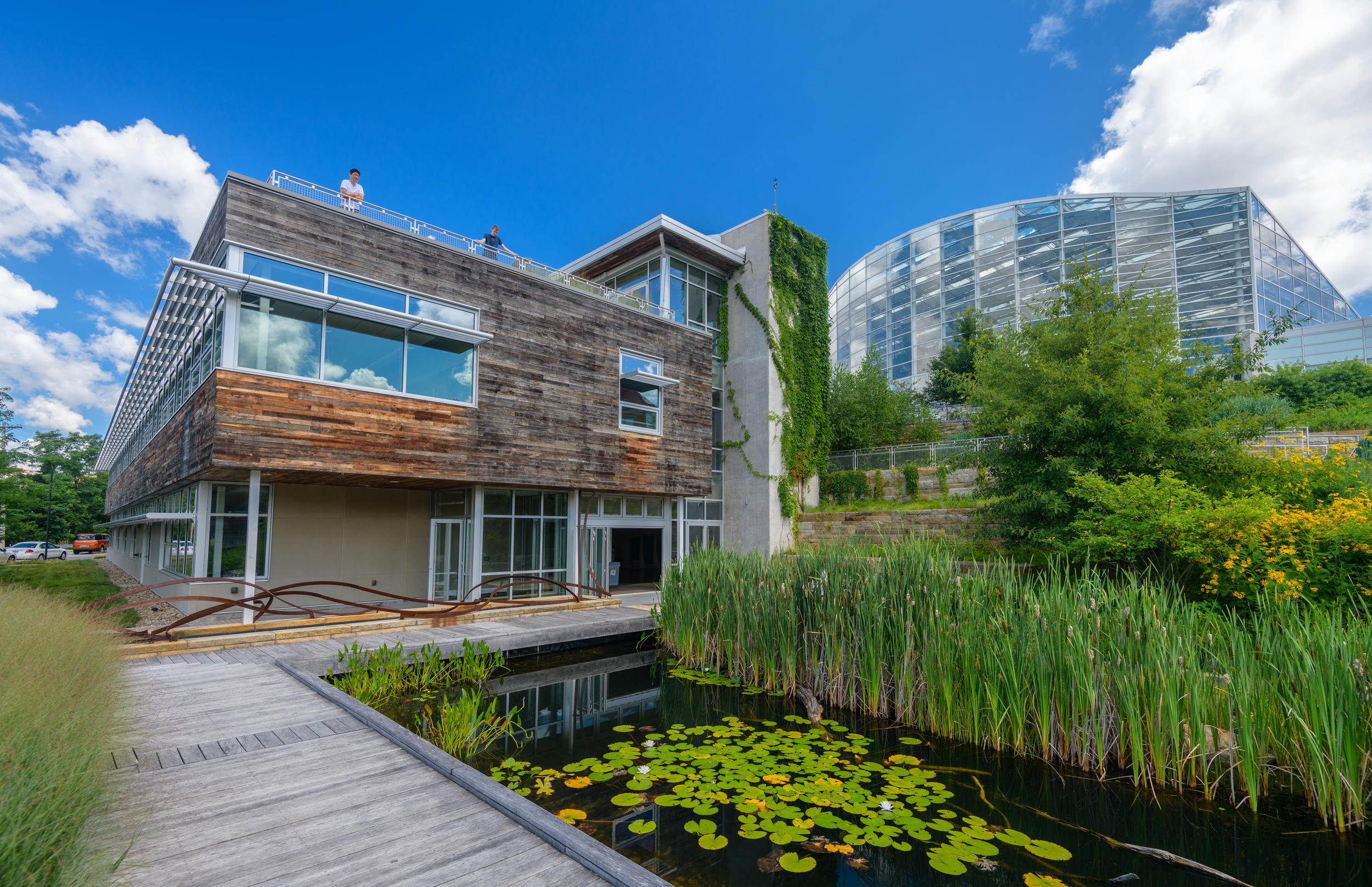 Against a bright blue sky, a glass and wood building abuts greenery and natural features, including a lily pond with a wooden walkway surrounding it.
