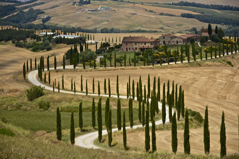 Landscape in Baccoleno, Asciano, in Crete Senesi area, Siena, Tuscany, Italy. Photo by  Antonio Cinotti