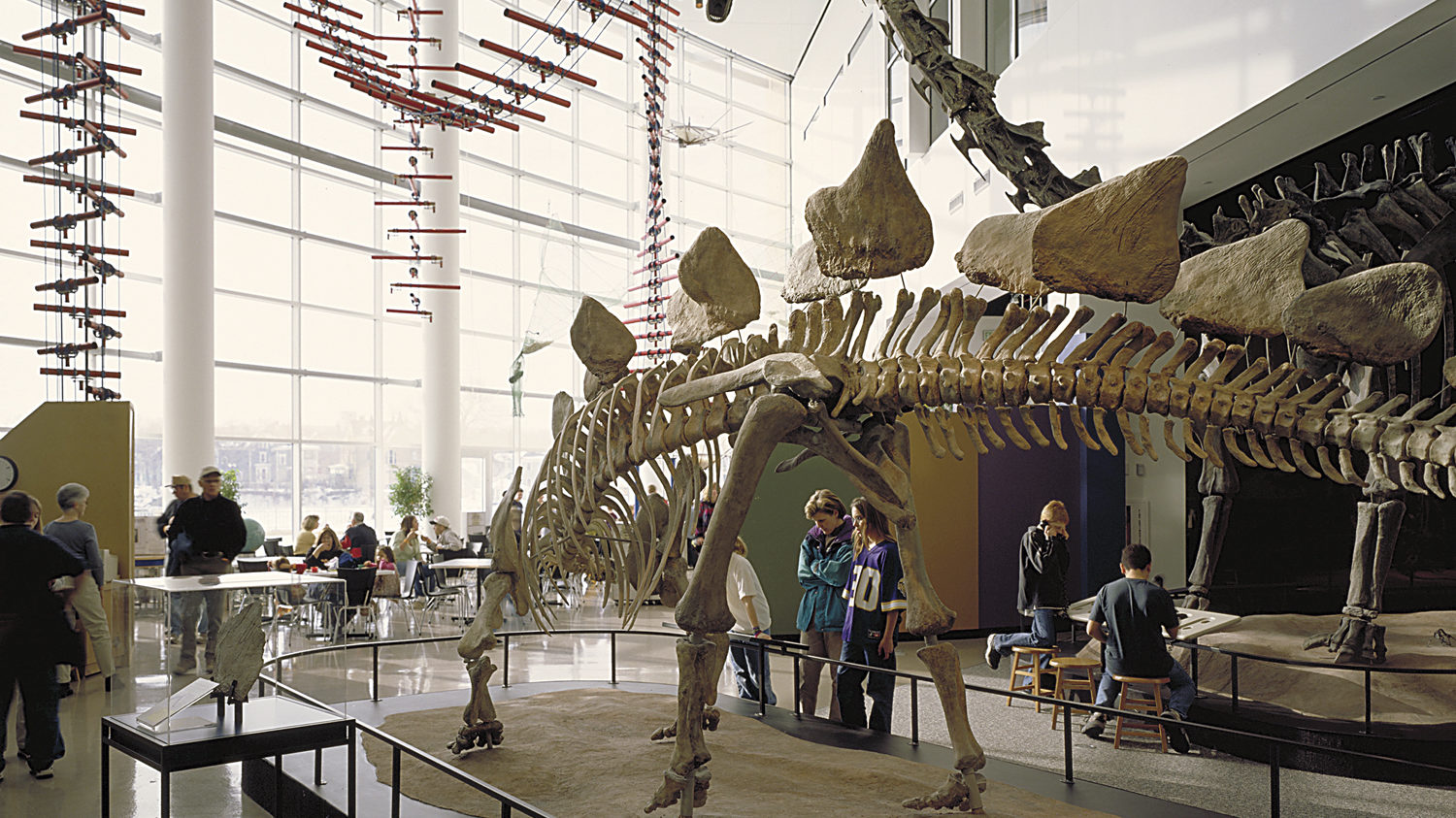 An interior view of SMM, with a large dinosaur fossil on display.