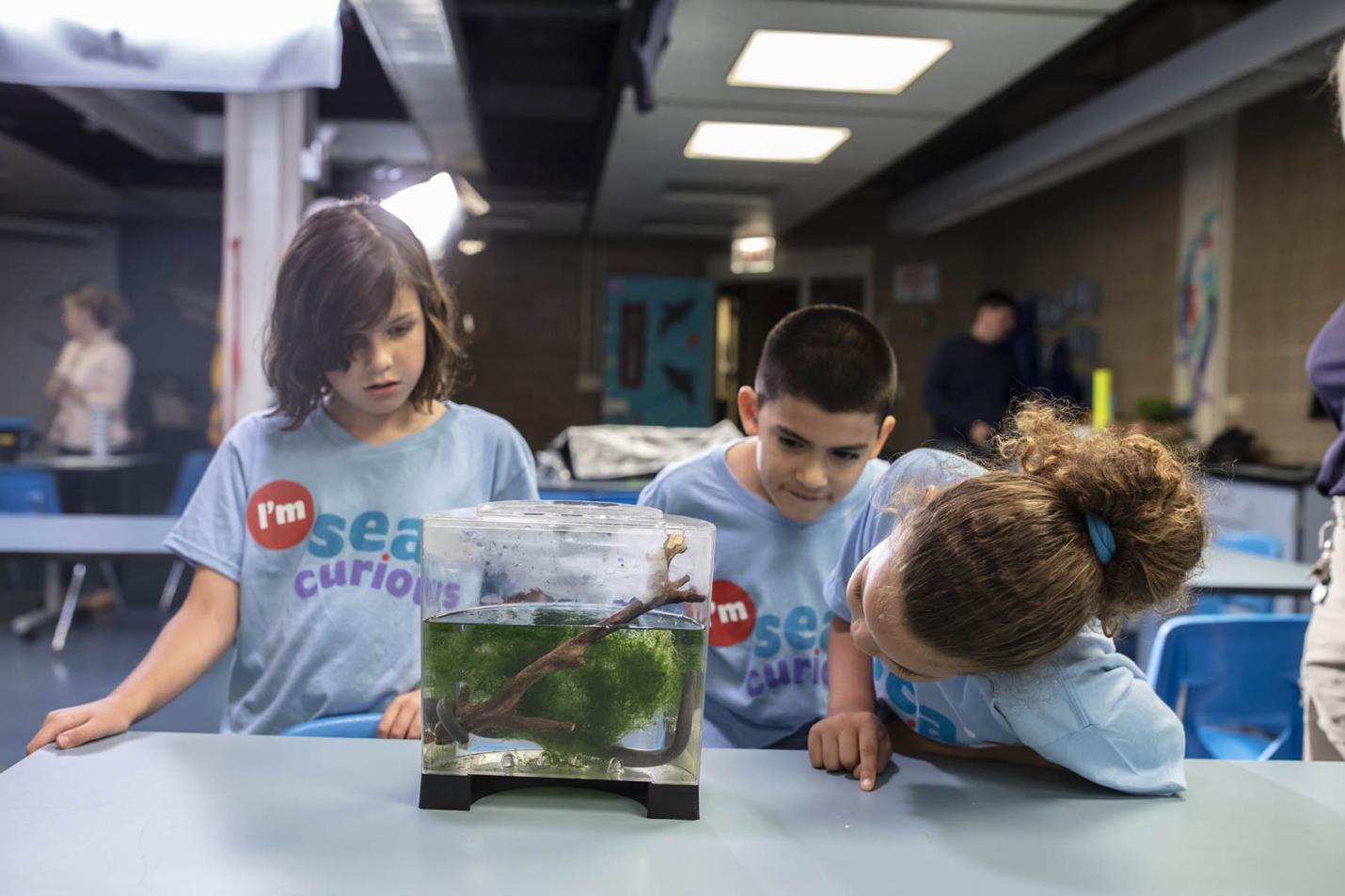 Children look at a tank of algae in a laboratory setting.