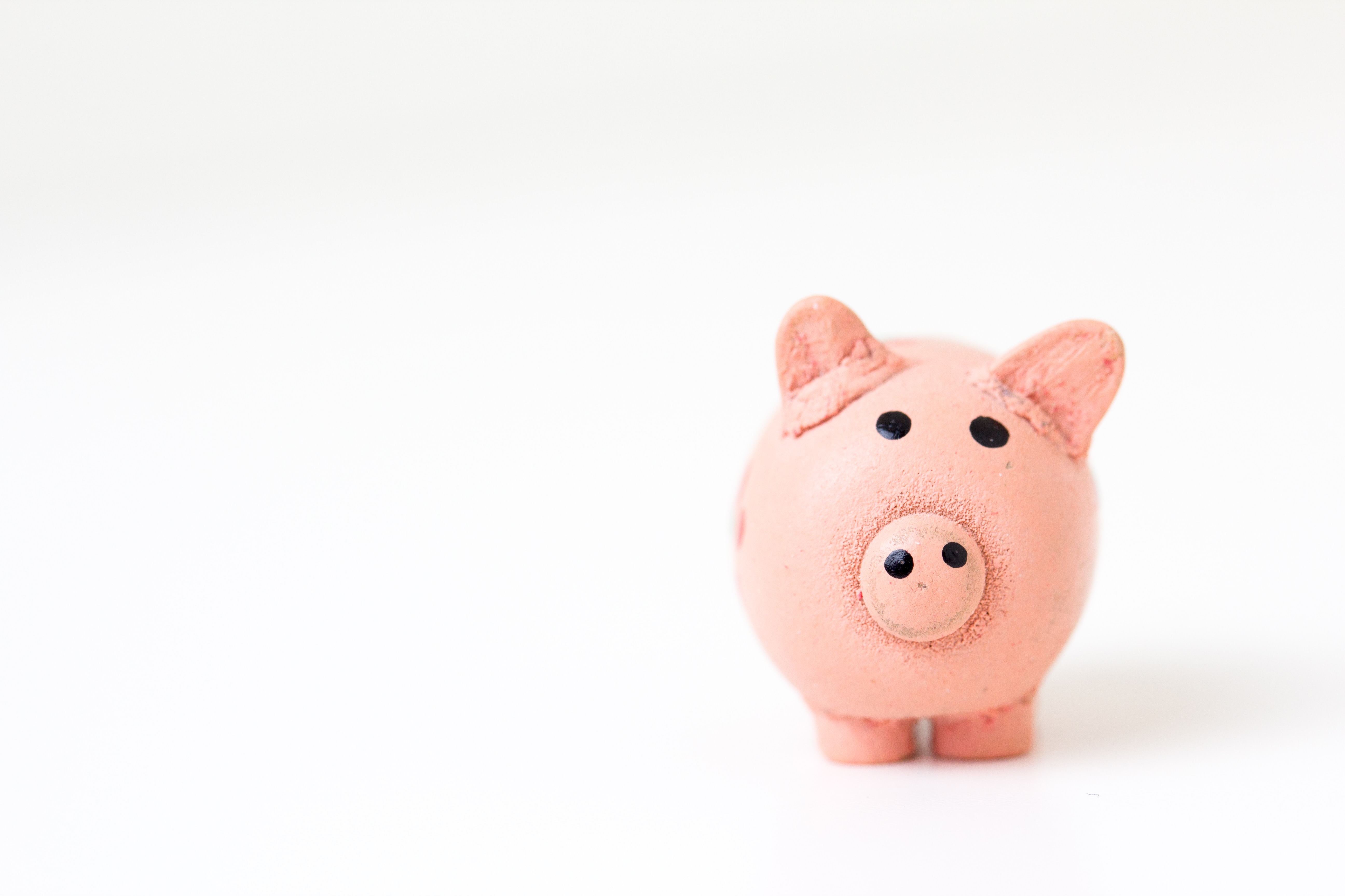 A small pink piggy bank sits off center against a white background.