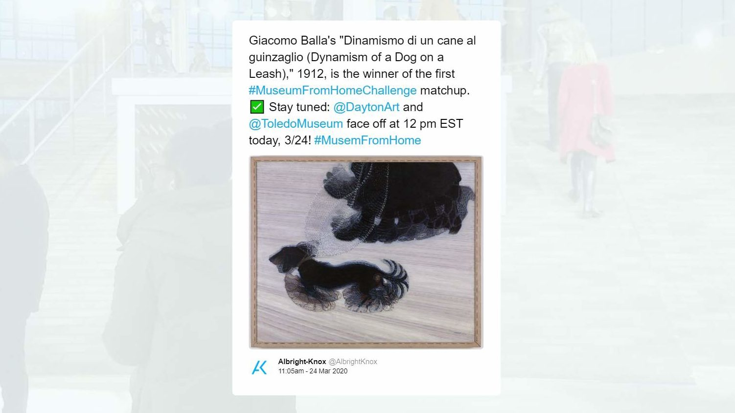 A screenshot of a tweet reading 'Giacomo Balla's 'Dinamismo di un cane al guinzaglio (Dynamism of a Dog on a Leash),' 1912, is the winner of the first #MuseumFromHomeChallenge matchup. White heavy check mark Stay tuned: @DaytonArt and @ToledoMuseum face off at 12 pm EST today, 3/24! #MusemFromHome""