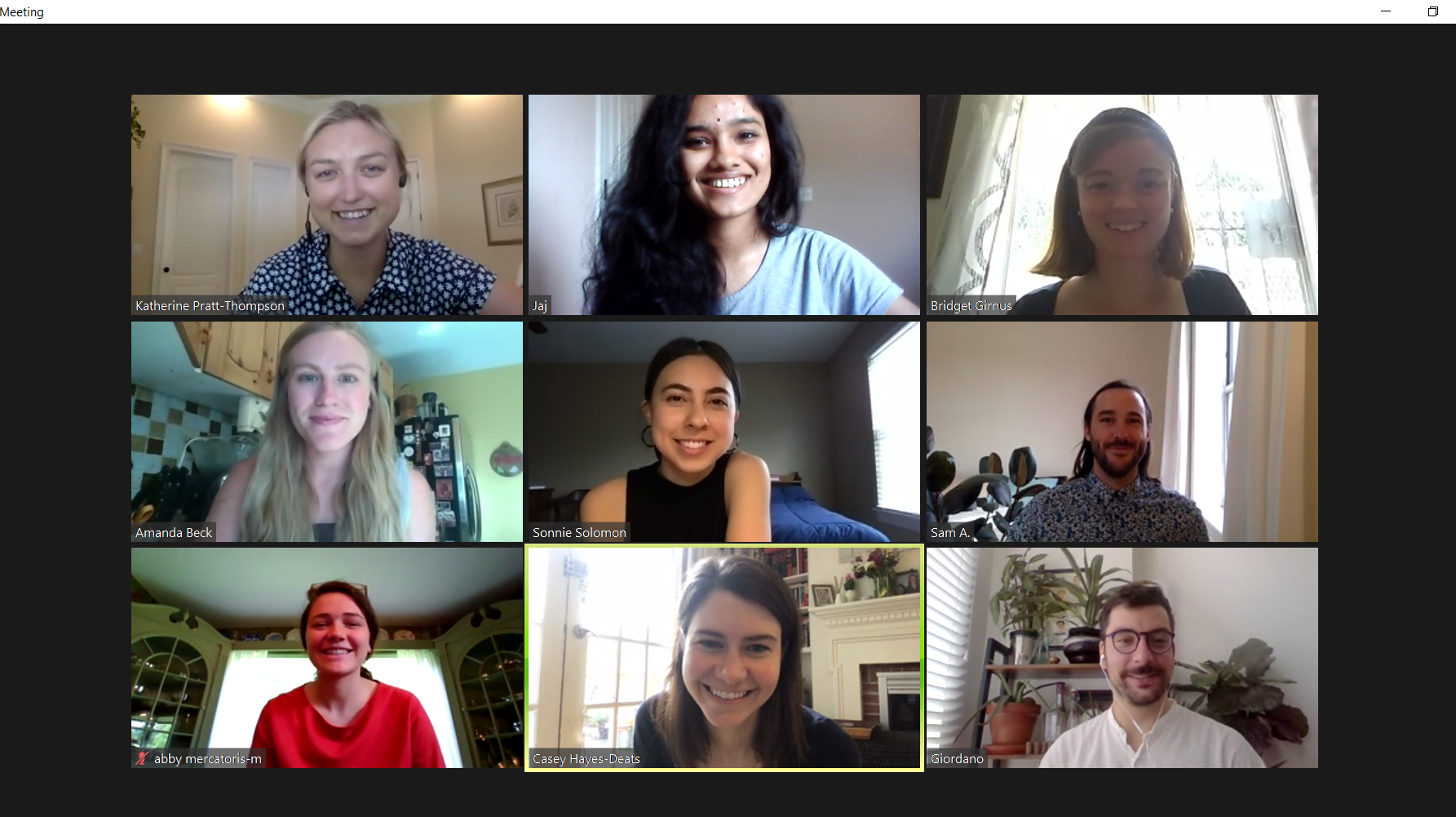 A Zoom grid showing nine interns